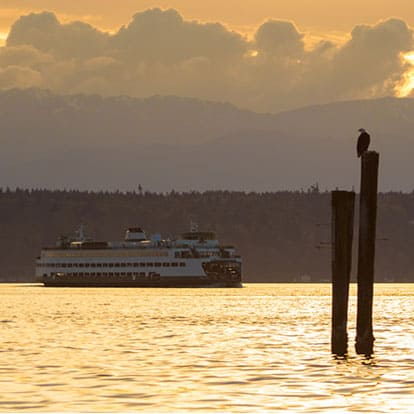 Edmonds ferry and bald eagle at sunset