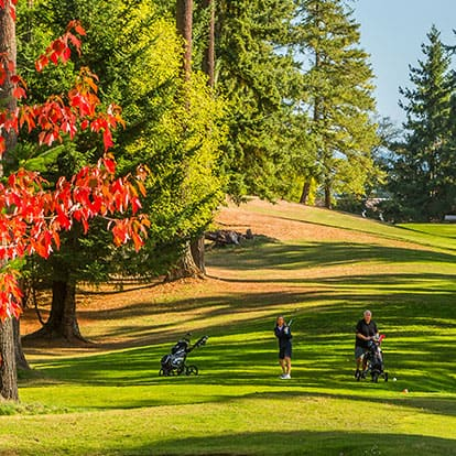 Golfers at the Lynnwood Golf Course