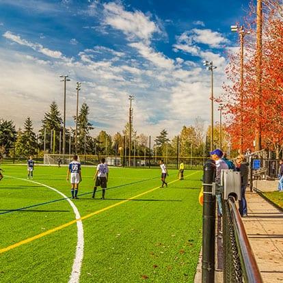 Meadowdale Playfields Soccer Pitch