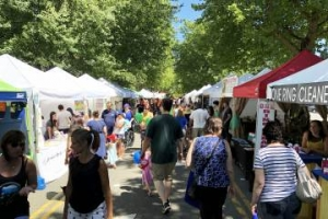 People and vendors at the Mill Creek Festival
